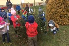 Máme stromek přání